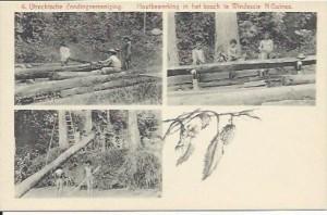 UZV 2-6 houtbewerking bos windessie